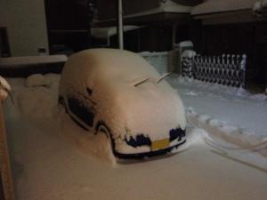 snowr2